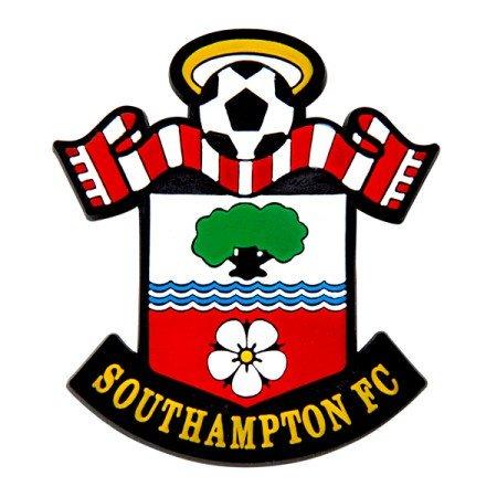 Southampton St Mary S Stadium Book Alma Media